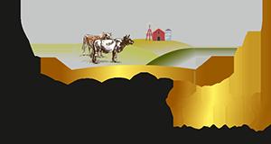 Koçak-Logo